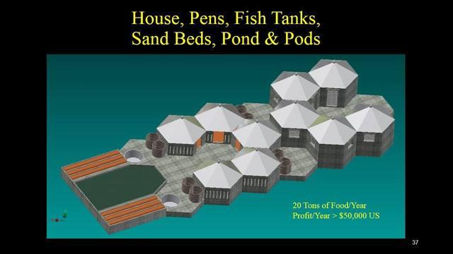 Project image sistema de produccion integrado con establos  tanque para peces  tanque de algas  camas de cultivo vegetal en arena  larveros y lombricomposta